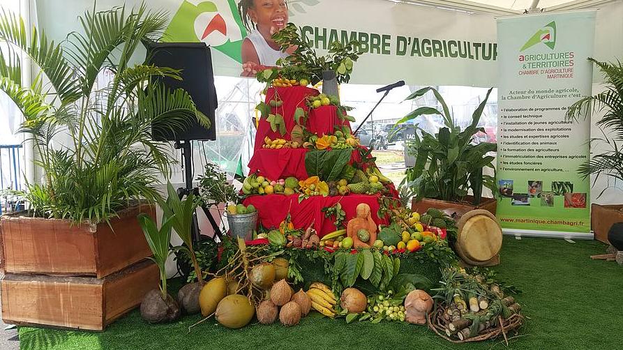 Salon de l 39 agriculture matnik agri une dition r ussie - Chambre agriculture orne ...